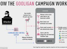 gooligan-infogram